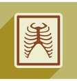 Icon of X-rays of ribs in flat style vector image