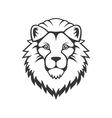 Lion Head Logo on White Background vector image