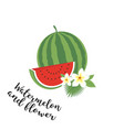 whole watermelon with slice and leaves vector image