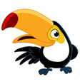 Smiling toucan vector
