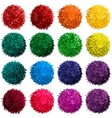 set with colorful pompon vector image