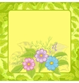 flowers cosmos and frame vector image