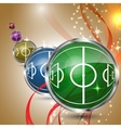 Multicolored grass sphere with soccer field vector image