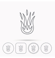 Fire icon Hot flame sign vector image