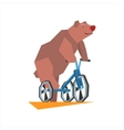 Circus Bear Riding Tricycle vector image
