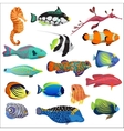 Exotic colorful tropical fish fishes collection vector image