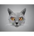 Grey cat with orange eyes - polygonal style vector image vector image