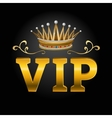VIP With Crown Composition vector image