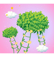 Ladders made of vine plants vector image