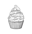 hand drawn cupcake with perfect cream swirls and vector image