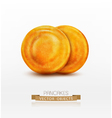 two pancake isolated on white background vector image vector image
