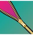 Zip open background vector image