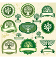 Set vintage labels with trees vector image vector image