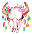 Watercolor bull skull with flowers and feathers vector image vector image