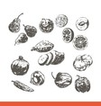 Ink hand drawn fruits and vegetables set vector image