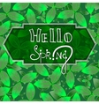 Hello spring green background with leaves EPS10 vector image