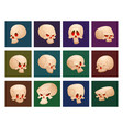 skull bones human face halloween cards horror vector image