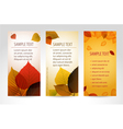 fresh natural banners vector image vector image