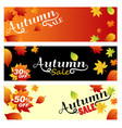 set sale autumn bright banners on light orange vector image