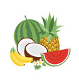 set of icons tropical fruits vector image