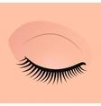 Close female eyes image with beautifully fashion vector image