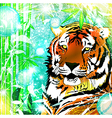 Fantasy Nature Tiger vector image