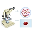 blood under a microscope vector image vector image