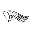 Spread out pegasus bird or angel wing vector image