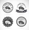 Pig label vector image