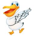 Pelican vector image