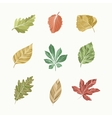 leaves collection vector image