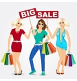 group of women with shopping bags vector image