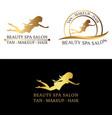logo set for beauty salon spa salon beauty shop vector image