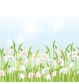 Spring flowers snowdrops seamless pattern vector image