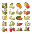 set of flat design cute colorful fruit vector image