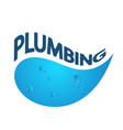 plumbing for home abstraction vector image vector image