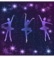 Tender ballerinas on dark background vector image