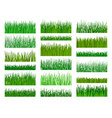 grass border horizontal seamless pattern vector image