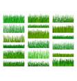 grass border horizontal seamless pattern vector image