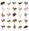 animals collection icons set isometric style vector image