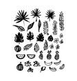 hand drawn brush plants vector image