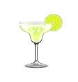 Margarita cocktail isolated on white vector image vector image