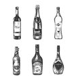 Alcoholic drinks in sketch hand drawn style vector image