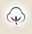 cotton flower vector image