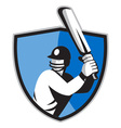 cricket player batsman batting vector image