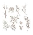 Hand Drawn Plant Monochrome Set vector image