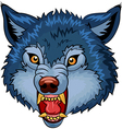 Cartoon of Angry wolf cartoon character vector image