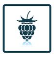 Icon of Raspberry vector image