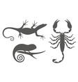 Exotic animals vector image