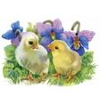 Yellow Watercolor chickens over garden flowers vector image